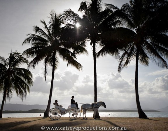 Catseye-Productions-Cairns-Port-Douglas-Photography-5-compressor