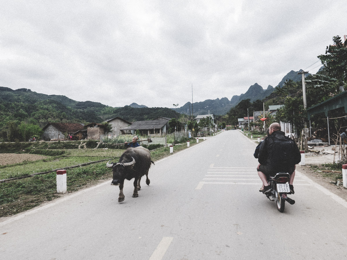 18Catseye Productions Vietnam P1000990